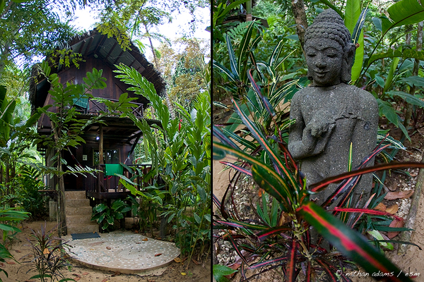 Bungalows and buddha