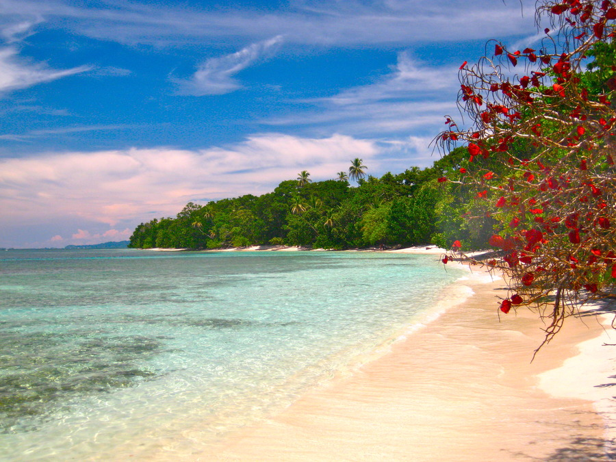 Red Frog Beach Island Resort Certified For Its: Activities And Surfing At Red Frog Beach